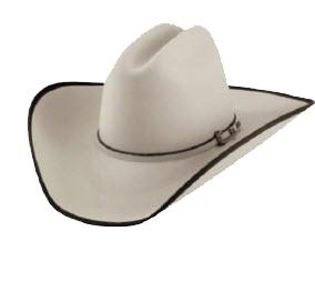 Felt Cowboy Hats : Renegade Stores